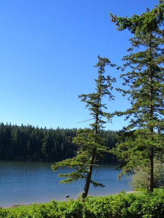 Lake Padden Park: Can't wait to come back