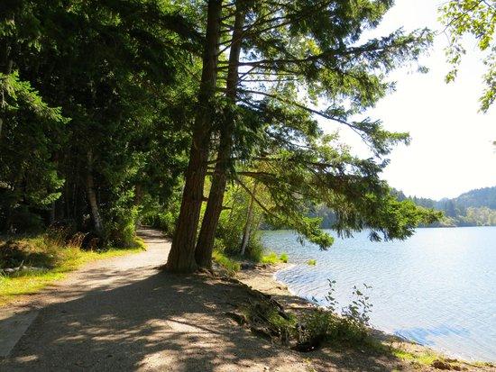 Lake Padden Park: View