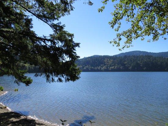 Lake Padden Park: Lake