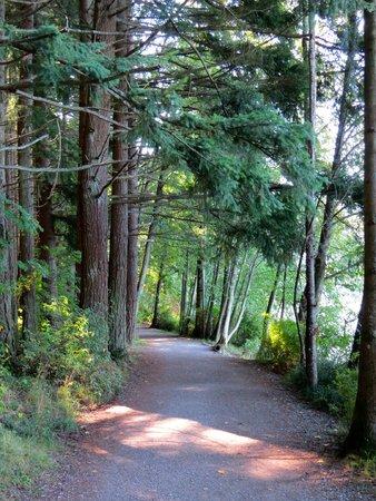 Lake Padden Park: Great fresh air around here