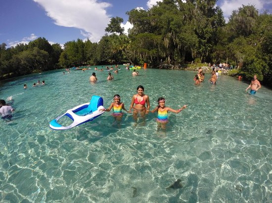 Salt Springs, FL: Natural Pool