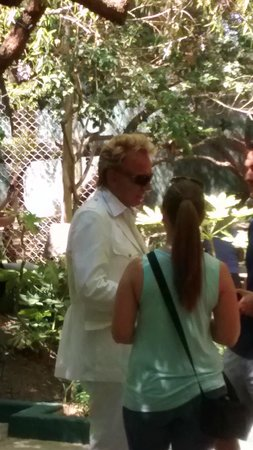 Dolphin At The Zoo Picture Of Siegfried Roy 39 S Secret Garden And Dolphin Habitat Las Vegas
