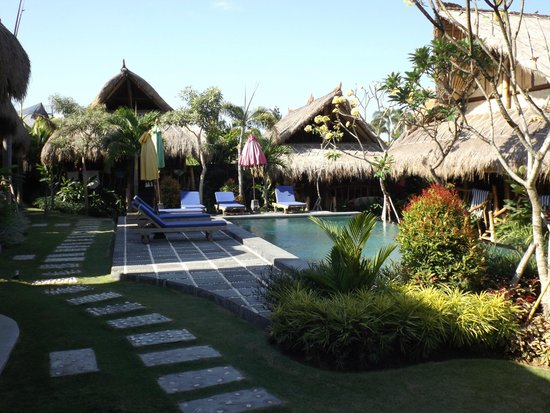 The Calm Tree Bungalow: Bungalows around the pool