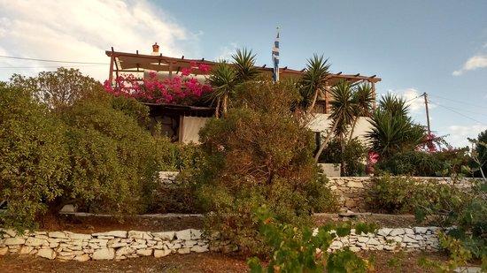 Villa Maria: vue d'un des bâtiments depuis le jardin du bas.
