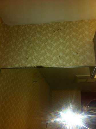 Howard Johnson Express Inn - Niagara Falls: Mould on wall above toilet in bathroom.