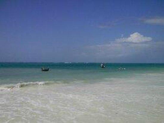 Neptune Palm Beach Boutique Resort & Spa: Plage de Diani beach... très jolie !!