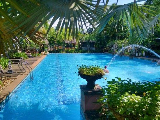 Baijin Holiday Hotel : Hotel Pool