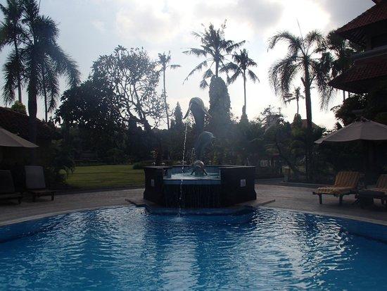 White Rose Kuta Resort, Villas & Spa: pool