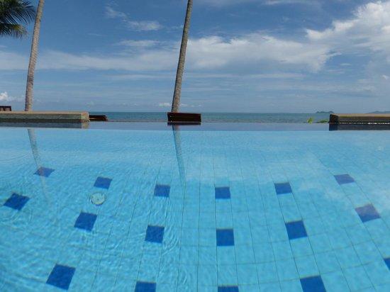 Coconut Paradise Resort: Infinity Pool