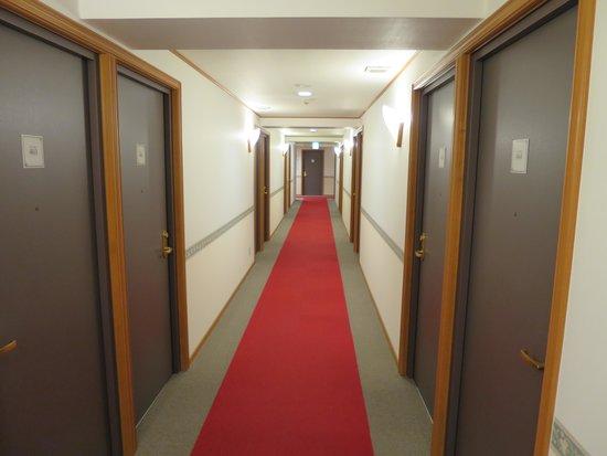 Toyoko Inn Chubu Kokusaikuko Orange Side: 廊下の様子