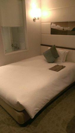 Solaria nishitetsu hotel Ginza : 單人房