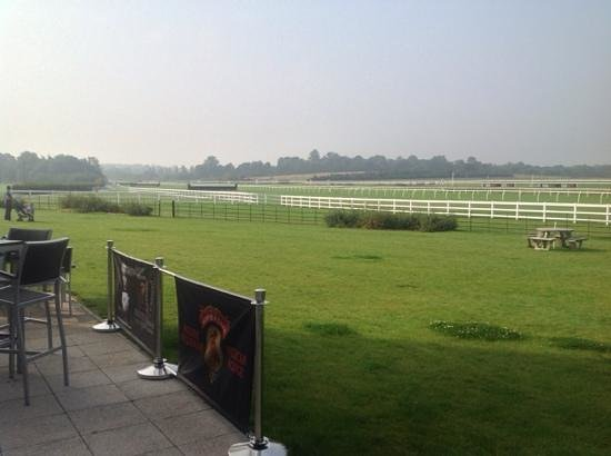 Lingfield Park Marriott Hotel & Country Club: view of the race course