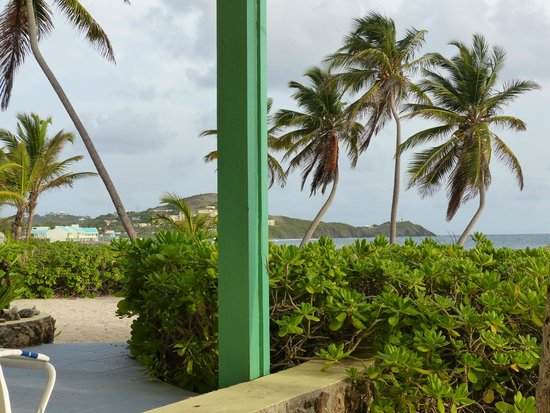 The Palms at Pelican Cove : View from room 5