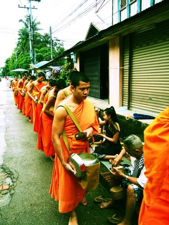 Alms Giving Ceremony: rows of monks lining up for alms