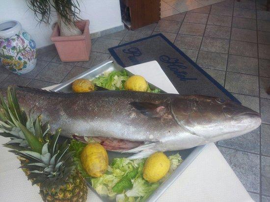 Punta Chiarito Resort Hotel Ristorante: Pescato del giorno