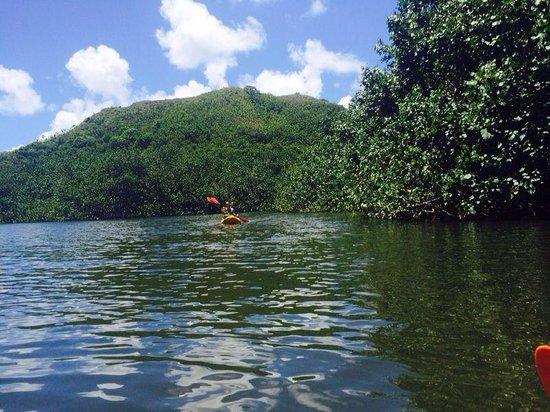 Kayak Wailua : Awesome