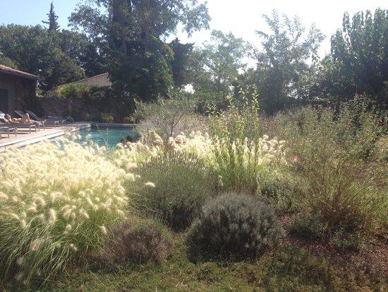 La Maison d'Ulysse : Fleurs et piscine