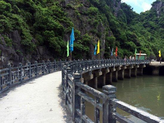 Asia Tour Advisor: Ha Long Bay