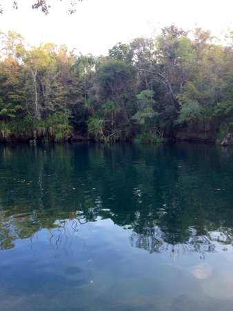 Berry Springs Nature Park : Berry Springs