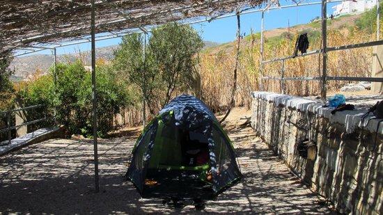 Kastanis Camping and Studios: Le sistemazioni
