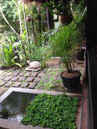 The Moon Boutique Hotel: Beautiful garden!!