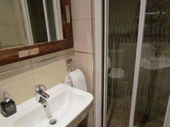 Pearse Lodge B&B: bagno