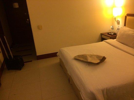 Sarovar Portico - Indore : The room
