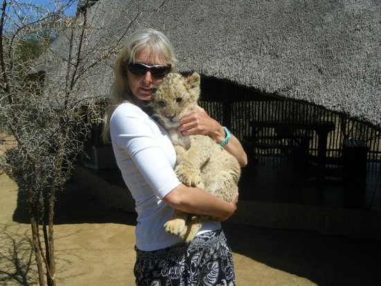 Ukutula Lion Park: My time with the cubs