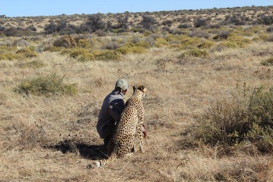 N/a'an ku se Lodge and Wildlife Sanctuary: Kiki e la guida