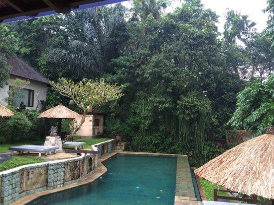 Beji Ubud Resort: Main pool from restaurant