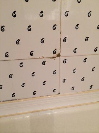 Erskine Bridge Hotel: Dirty tiles in bathroom