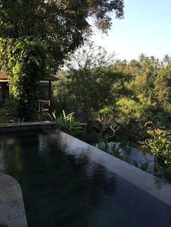 Beji Ubud Resort: Smaller infinity pool overlooking larger infinity pool
