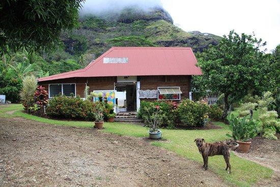 Tupuna Mountain Safari Bora Bora: Künstler