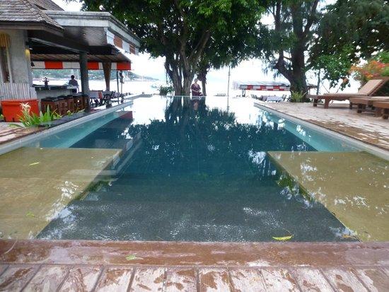 Samui Honey Cottages Beach Resort: Pool