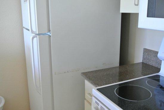 Island Seas Resort : Refrigerator ouchy