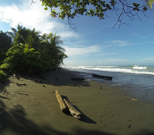 Lanzas de Fuego Surf & Adventure Lodge: First morning surf check