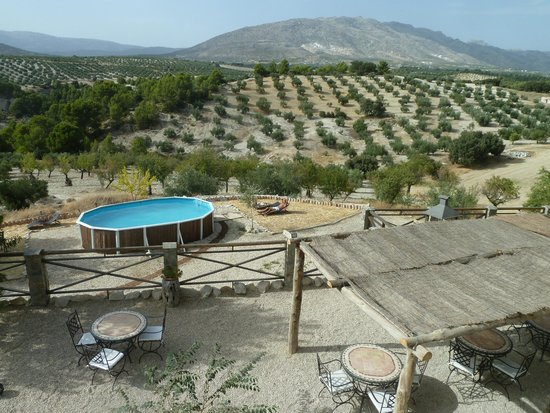El Geco Verde: View of the terrace and pool