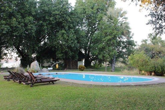 Waterberry Zambezi Lodge: Waterberry pool