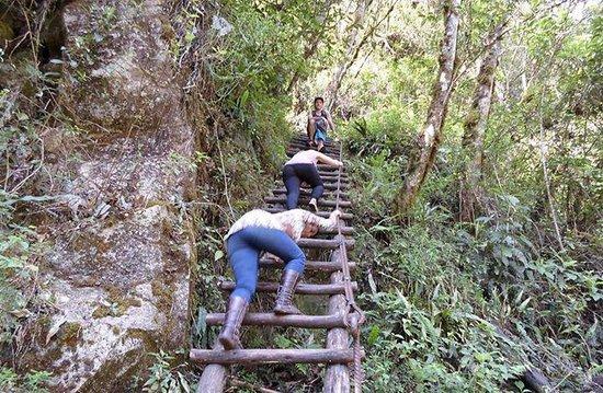 Putucusi Mountain: Subida de escaleras!