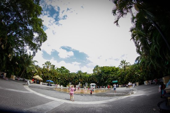 Palm Beach Zoo & Conservation Society : The fountain at the entrance. Kids loved it!