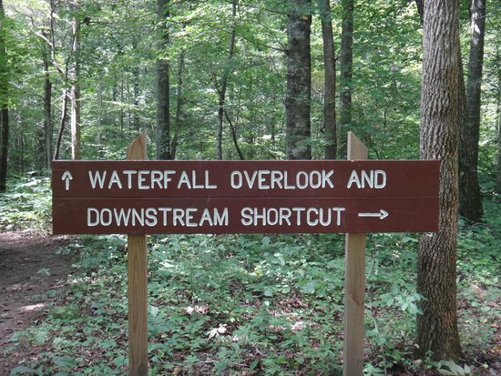Cookeville, Теннесси: To go the natural pool take Downstream Shortcut