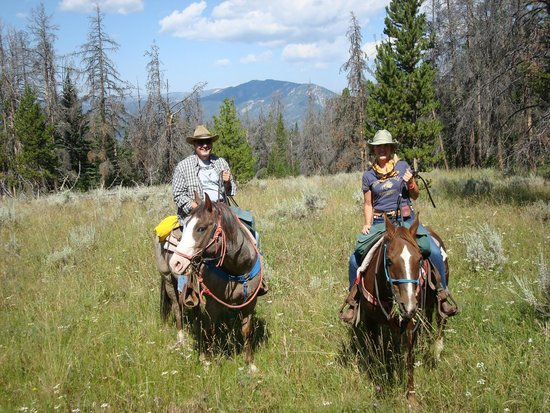 Jake's Horses: On Digger and Charlie in a gorgeous meadow