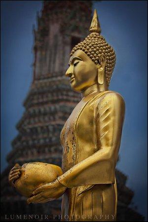 Templo del Amanecer (Wat Arun): Serenity.