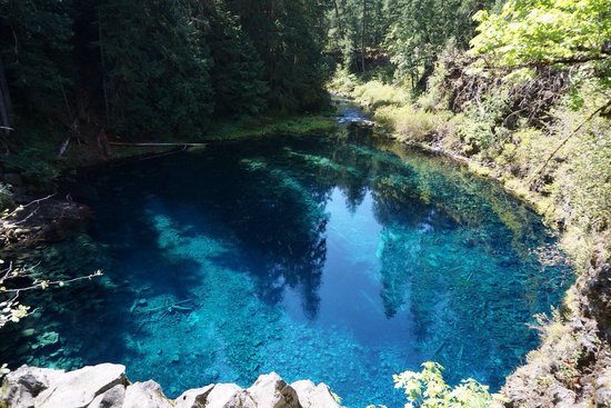 Blue Pool   Tamolitch Falls   Picture Of Tamolitch Blue Pool Trail,  Cascadia   TripAdvisor