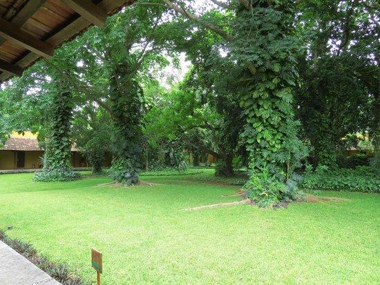 Hacienda Misne: Esterni