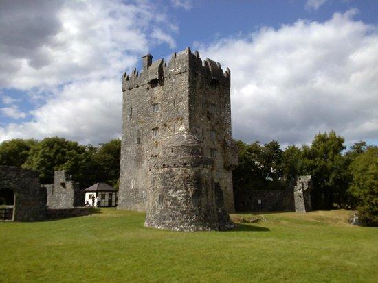 Aughnanure Castle: Il Castello