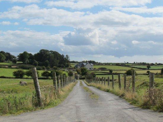 Ross Errily Friary: strada di accesso al sito