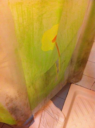 Hotel San Pietro: Tenda doccia con muffa