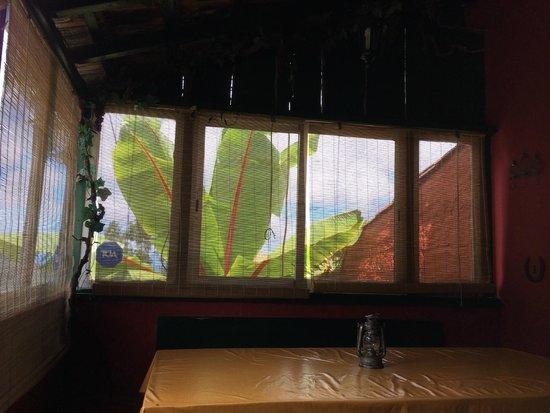 Vistas Terraza Picture Of Tasca Como Antano Tegueste
