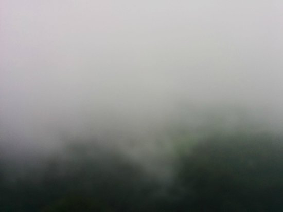 The Wind Munnar: View from room
